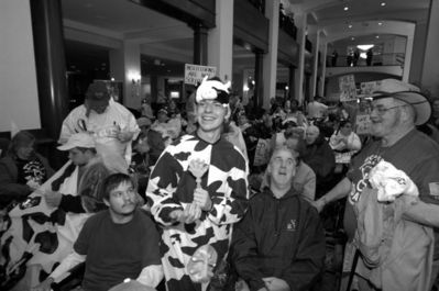 Hotel lobby is crammed full of ADAPT protesters. In front a man in a cow suit is surrounded by folks in wheelchairs
